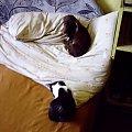 pies z kotem #DodajTagiDoZdjęcia