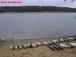 images36.fotosik.pl/164/0695dd6f5d1b1ff3m.jpg