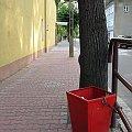 lubskie obrazki #ulica #kosz #Lubsko