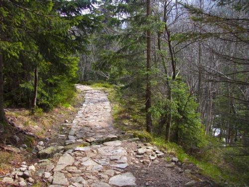 Czerwony szlak na Śnieżkę_maj 2010 #Łomniczka #góry #Karkonosze #Śnieżka