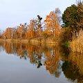 jesien zlota #jesien #las #Listopad #staw