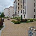 otoczenie #wynajmę #Olsztyn #Leśna #apartament #DoWynajęcia