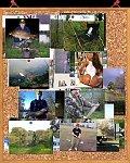 images36.fotosik.pl/95/de3365ed6fc97fa3m.jpg